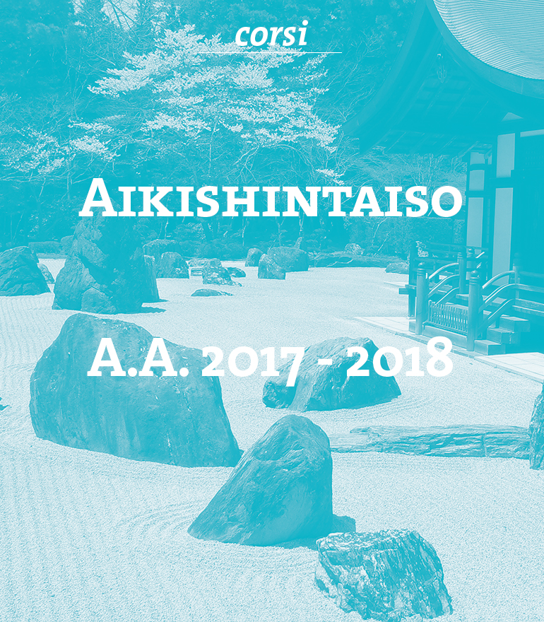 aikishintaiso-testi